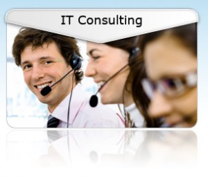 Network and IT Consulting